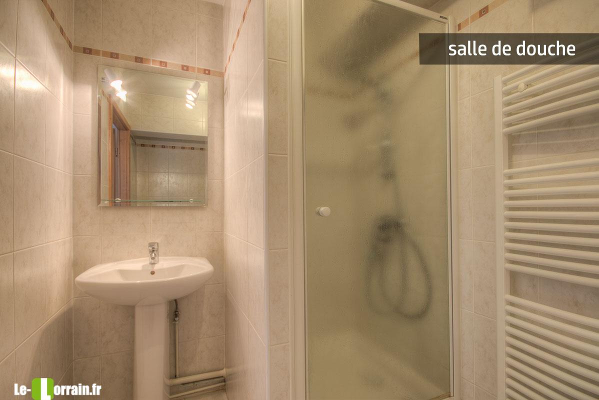 Appartement 2 chambres avec garage et balcon en plein cœur de Thionville